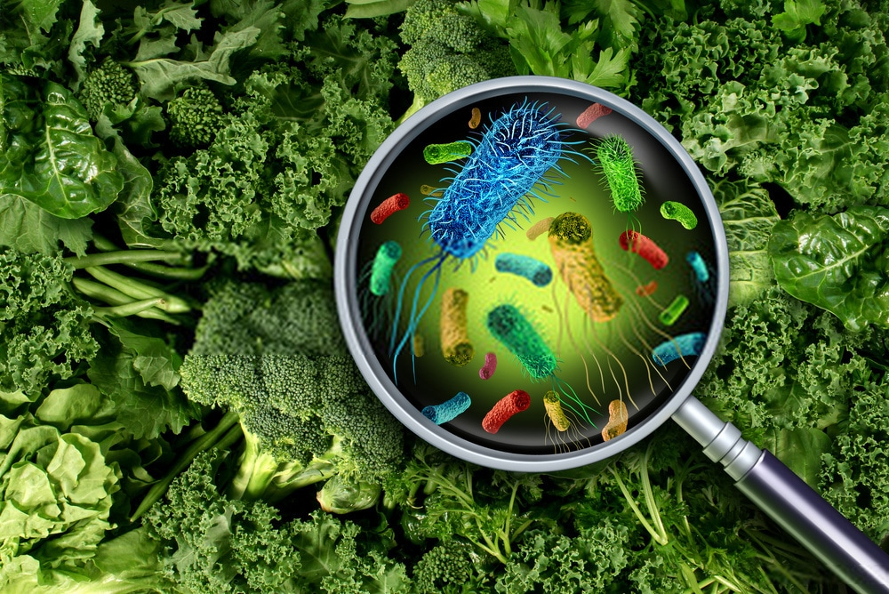 Concerns about Salmonella bacteria, how to survive this infection
