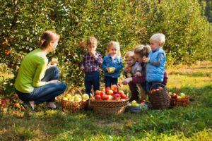 Tips For Planting Young Fruit Trees
